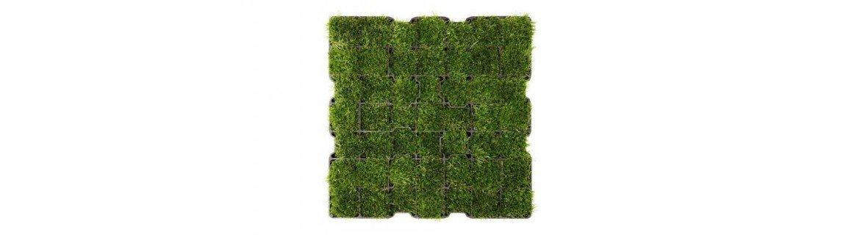 Kratki trawnikowe producent systemów zagospodarowania zieleni